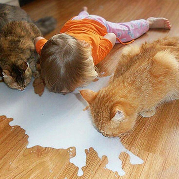 Kola smaker best i flaske og melken smaker best rett fra gulvet ;-)