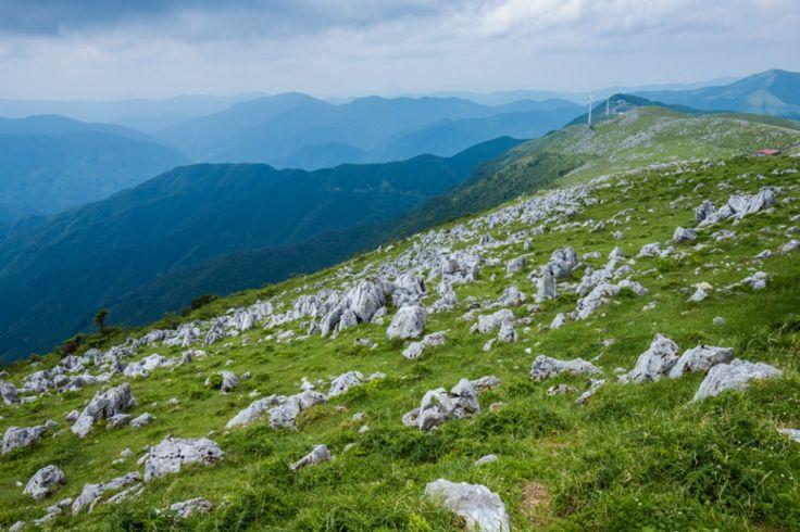 愛媛と高知の県境に広がる標高1000〜1455mの石灰岩の高原。秋吉台・九州の平尾台と並ぶ日本三大カルストのひとつで、愛媛側では、四国カルスト県立自然公園に指定されている。姫鶴平・五段高原・天狗高原・大野ヶ原などで構成され、長さ25m・幅3km。最高峰は標高1485mの天狗高原で、石鎚山など周辺の山々が一望できる。五段高原や姫鶴平では、草原の間に白い石灰岩が露出した不思議な景観が見られる。なだらかな山肌には、夏は草に覆われた緑のじゅうたん、秋はススキが一面に広がり、乳牛の放牧地帯としても有名。