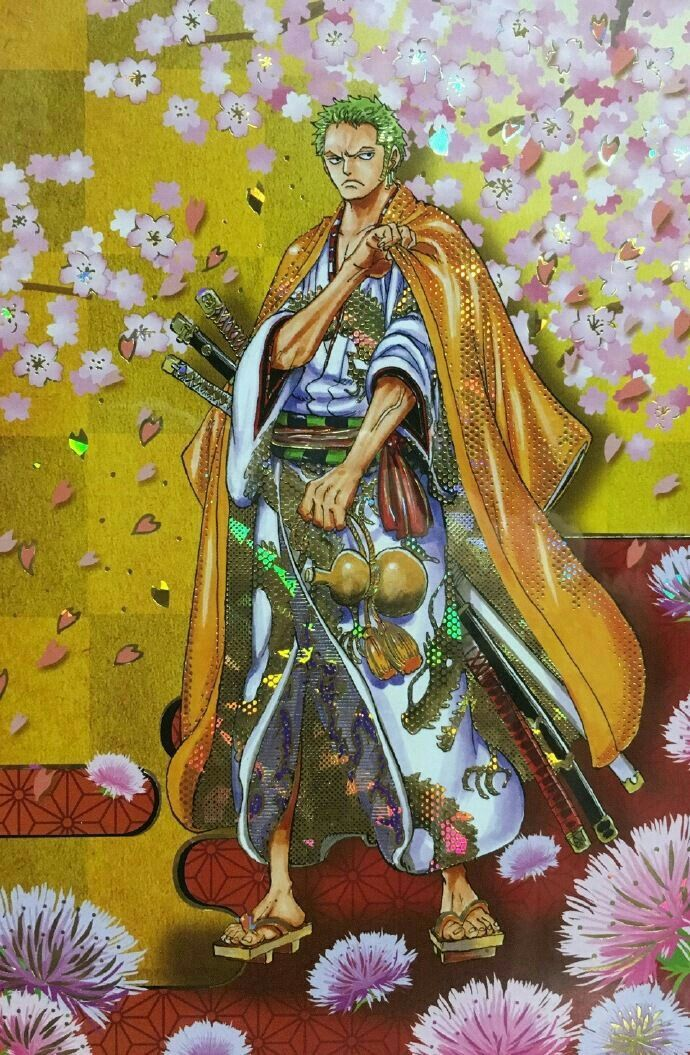 Zoro Wano Kuni Dessin animé, Dessin, Anime