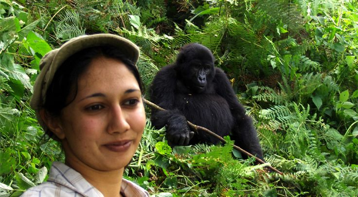 Don't miss this last chance to Gorilla Trek at $450!
