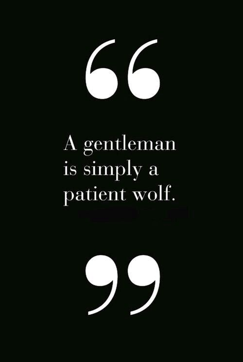 A patient wolf ~ Quote