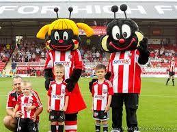Image result for Brentford FC Bees