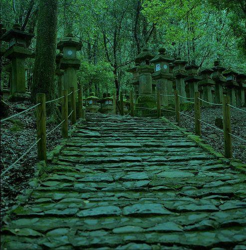 stone steps and stone lanterns, Kasuga Grand Shrine, Nara, Japan