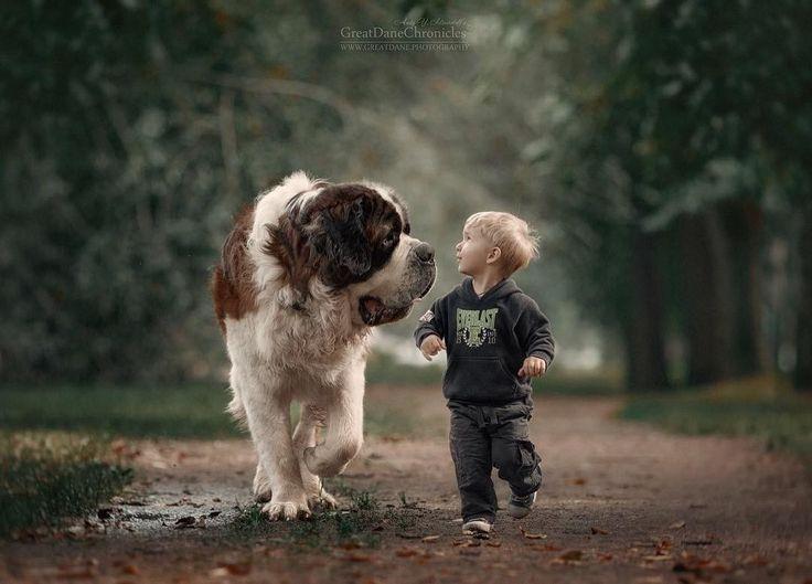 Дети и большие собаки в фотографиях Андрея Селиверстова