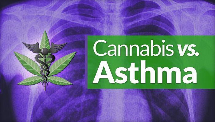 Marijuana Shows Promising Results in Successfully Managing Asthma Related Symptoms