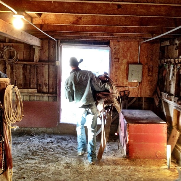 life of a cowboy                                                                                                                                                                                 More