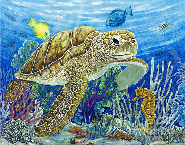 Sea turtle peces pinterest turtle watercolor and for Turtle fish paint