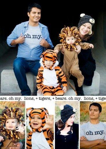 Cute Lions, tigers, and bears family costume.