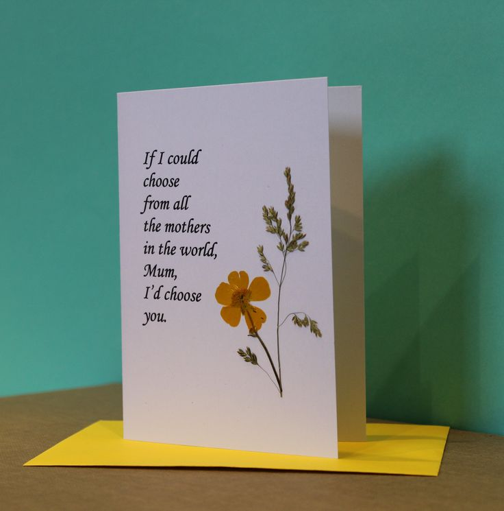 Mother's Day Card available from The Owl Tree Ireland shop on Etsy. Real Connemara pressed flowers.