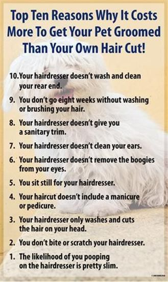 Whatever your groomer is charging, is worth paying instead of grooming your pet yourself. Not only is it safer for a professional to groom your pet. It is usually less stressful for you and the pet. Also any clipper worth buying will cost atleast as much if not more than it would cost to pay a professional. And don't forget the maintenance to keep your equipment sharp. And best of all your dog will look great.