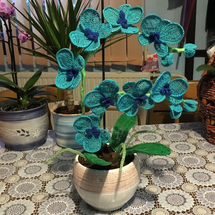 Crocheted orchid (blue) I. #crochet #orchid #madebyme #puppets #handmadeart
