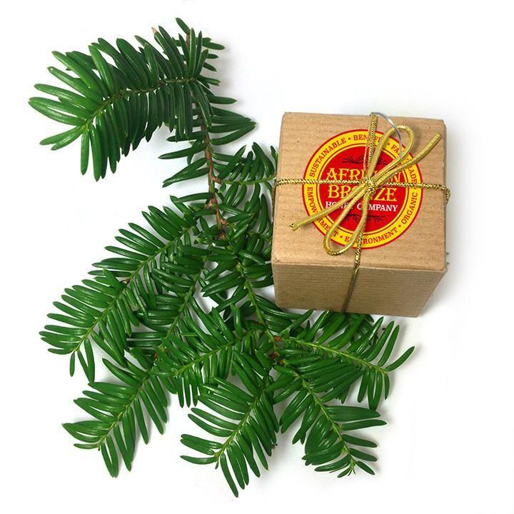 Hot Honey Christmas Ornament Wholesale Case of 12