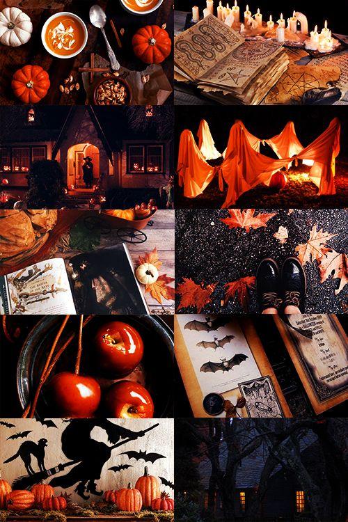 Seasonal appreciation blog~! Fall and Autumn to be exact