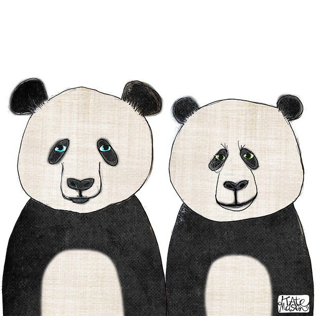 Back from holidays overseas & lots of photos to post but first a little @projectadelaide catchup from May.... This is Wang Wang & Funi from Adelaide Zoo! #illustration #messymisskate #pandas #pandabear #wangwangandfuni #adelaidezoo #projectadelaide