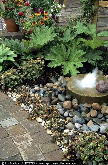 Gunnera and millstone-style water feature