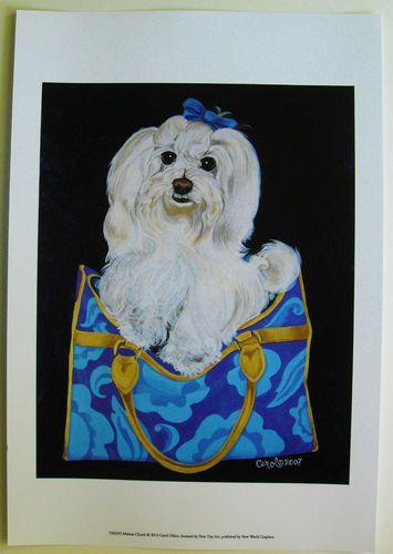 $23.50  Animal DOG Fashion Purse Handbag ART Print Maltese Clutch BY Carol Dillon   eBay #dog #pets #walldecor