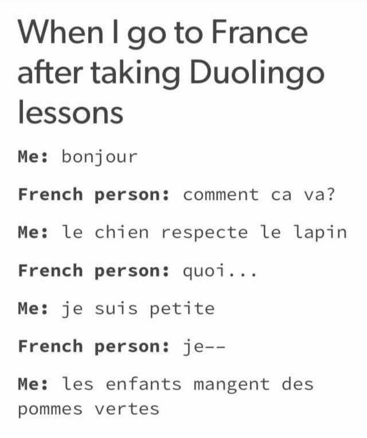 Duolingo Memes Korean Funny French Bilingual Humor Language Jokes