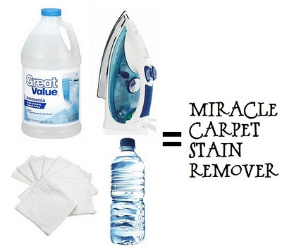 Carpet cleaning. 1 part ammonia:1part hot water in a spray bottle. Spray