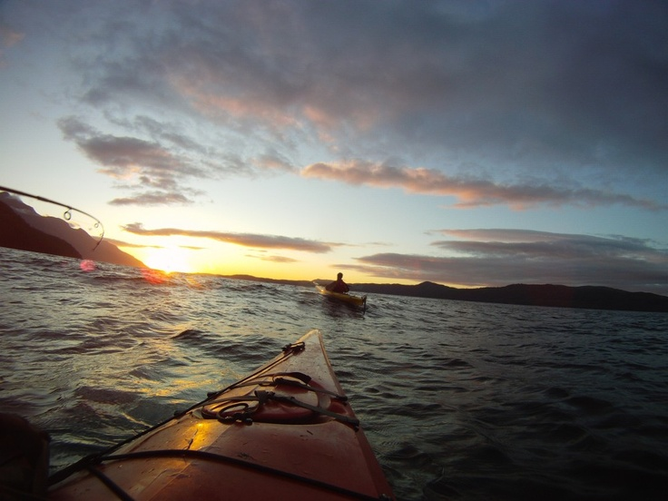 A photo from Wildcoast Kayak Tours, who've we've partnered with on their Premium Orca Camp 7-Day Vacation Package with Kayak Tour.