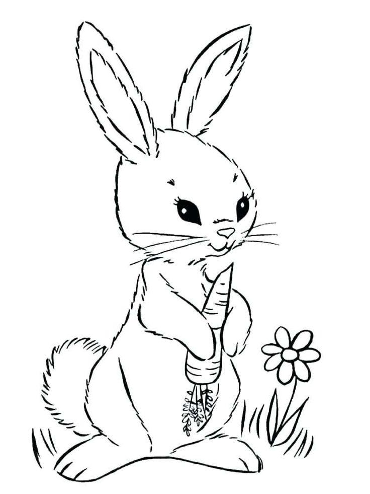 rabbit coloring page printable  malvorlage hase
