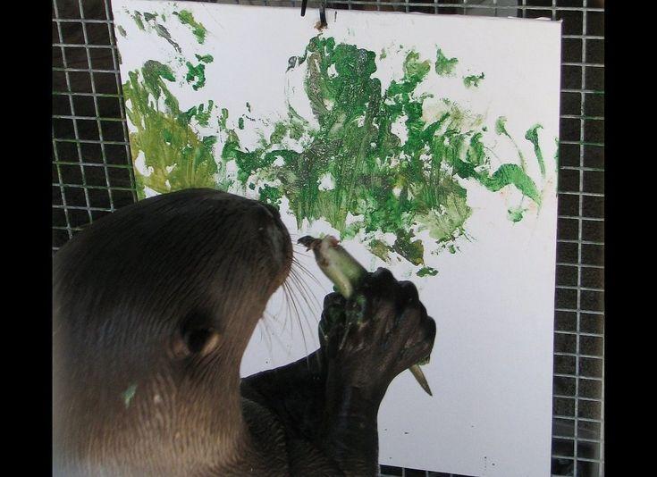 Savage Zoo - Miami - Otter Creating Art Work! #iftheycanIcan :)