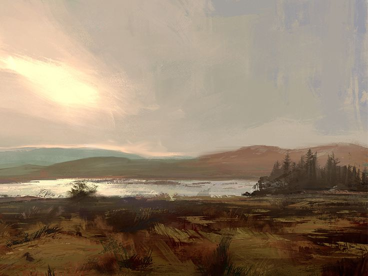 Fields by Drawithpixels