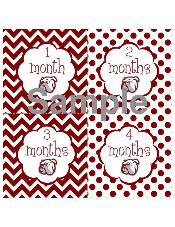 18 Month Stickers: MSU Mississippi State Bulldogs College By