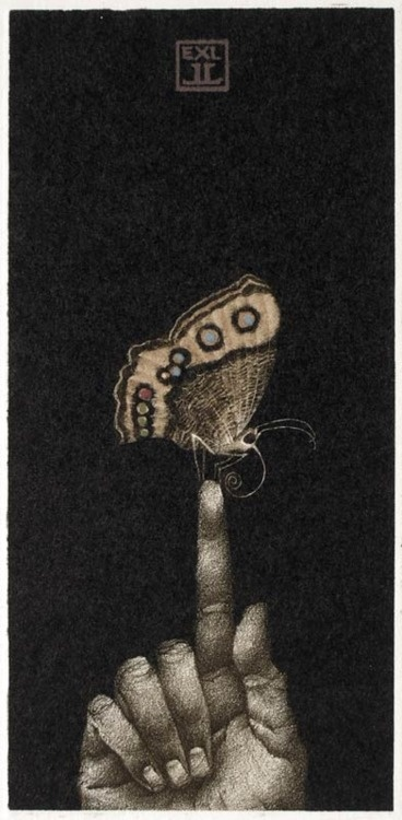 Exlibris LL, Small Butterfly, 2008 by    Marina Richterova