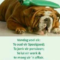 Quote Afrikaans ouderdom