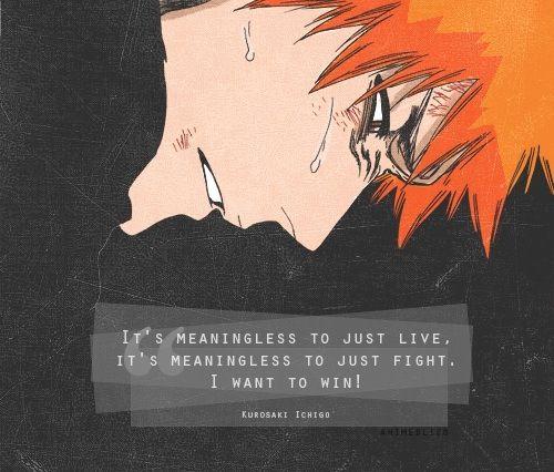 Ichigo Quotes 240 Best Anipics Images On Pinterest  Anime Art Anime Guys And .