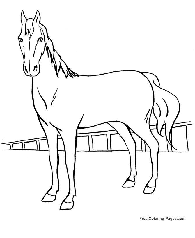 17 besten einhorn bilder auf pinterest  einhörner pferde