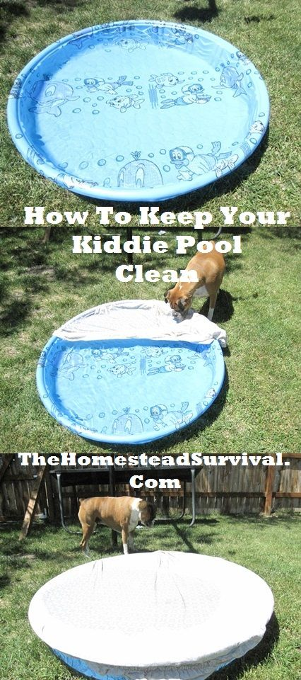Use a fitted sheet to cover the kiddie pool when not in use.  My mouth just fell open.  I have been scrubbing and re-filling our kiddie pool every weekend for the past two summers!