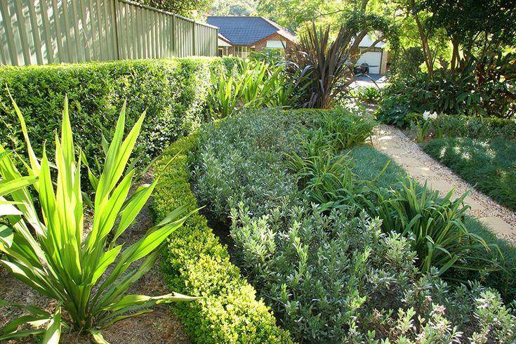 front yard low maintenance front garden ideas australia ...