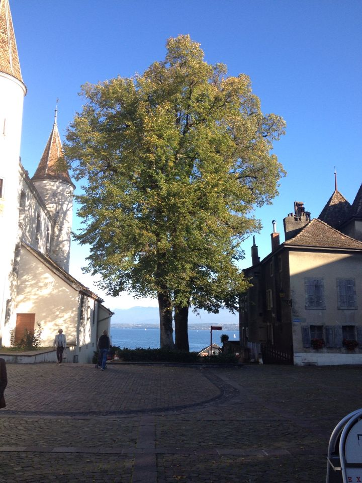 Church and Municipal hall - Nyon, Suisse