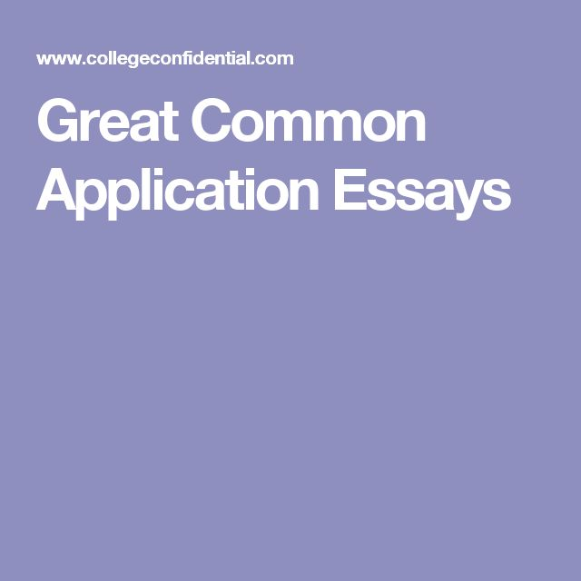 Best College Essays Images On   College Application