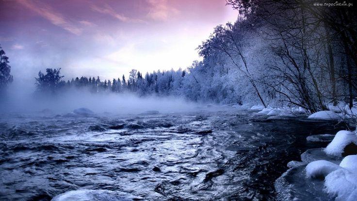 Zima, Rzeka, Mgła, Drzewa