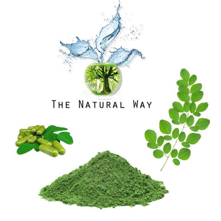 Moringa Oleifera - Powerful Benefits