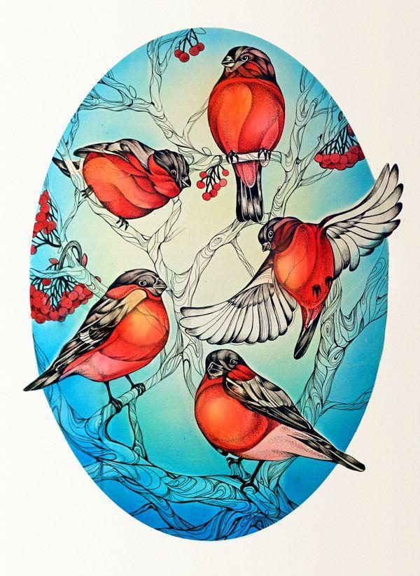 Bullfinch by Alice Macarova