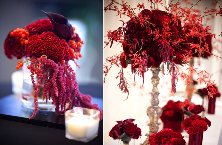 Images about wedding burgundy and velvet on
