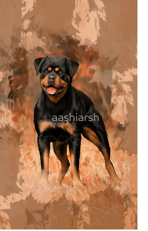 #Rottweiler #Dog Oil Painting #Watercolor #Art #rottie #dogs #pet #animal #doggy #rottweilers #portrait