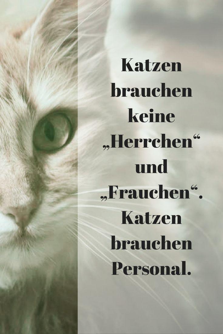 """Katzen brauchen keine """"Herrchen"""" und """"Frauchen"""". Katzen brauchen Personal."""