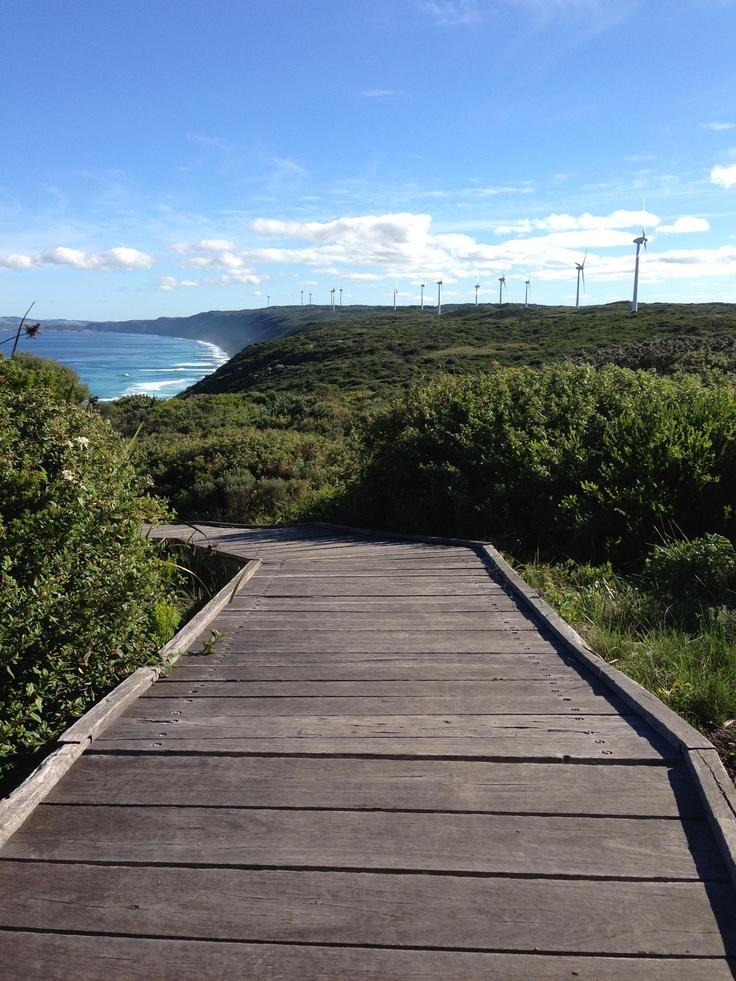 Bibbulmun Track past the Albany Wind Farm along the Torndirrup Peninsula facing Denmark, Western Australia