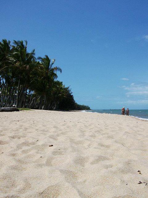 Palm cove #beach in #Cairns, #Australia