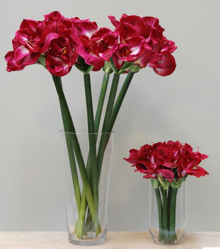 Faux amaryllis bulb and flower amaryllis stem with bulb 17 best images about artificial flower amp plant mightylinksfo