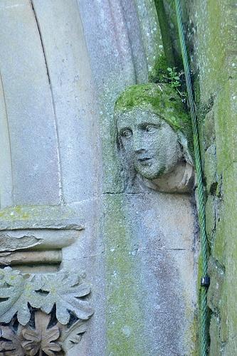 Canterbury City Cemetery - Pretty Face
