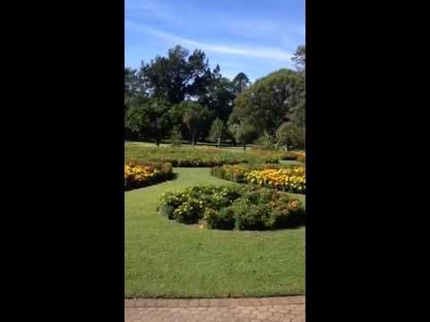 Kangaroo Segway Tours Eddie during free segway at Brisbane City Botanica...