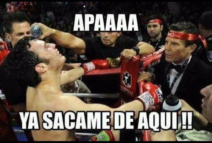 Ponen contra las cuerdas a Chávez Jr... en memes - Grupo Milenio