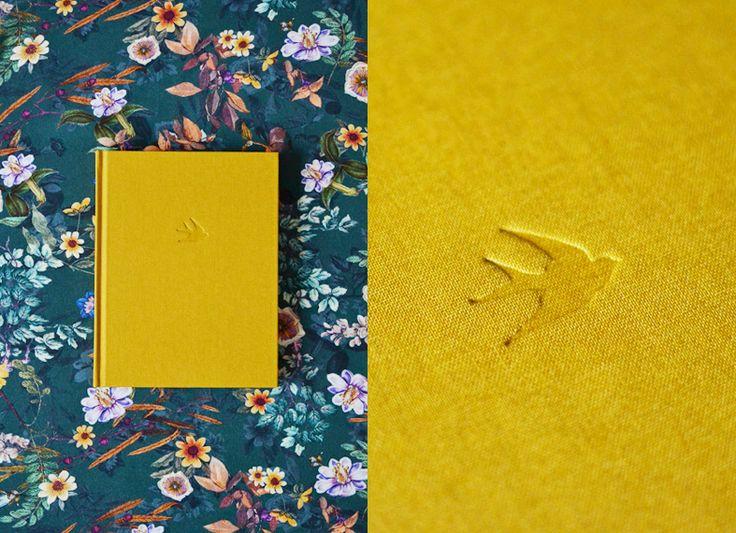 andorinhas beija-flor