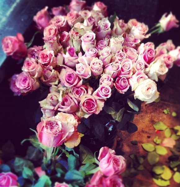 Time goes by #PiagetRose