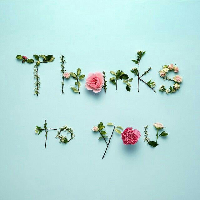 Gratitude With Images Flower Words Flower Art Flower Quotes